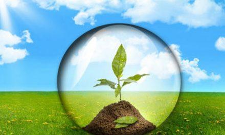 18 стъпки за екологична политика в полза на здравето ни