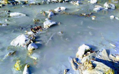 Екологичната заплаха в Босилеградско