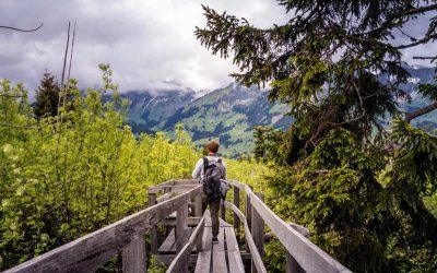 Опазена природа или чиста околна среда: Какво избираме?