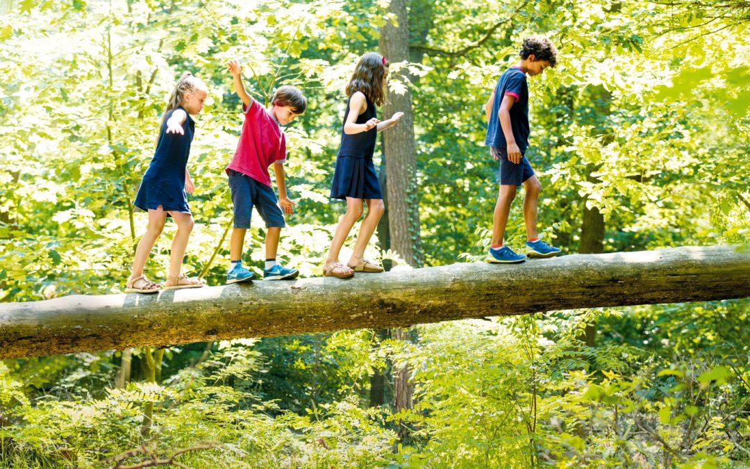 Урокът по екология, който децата ни няма да получат в училищe